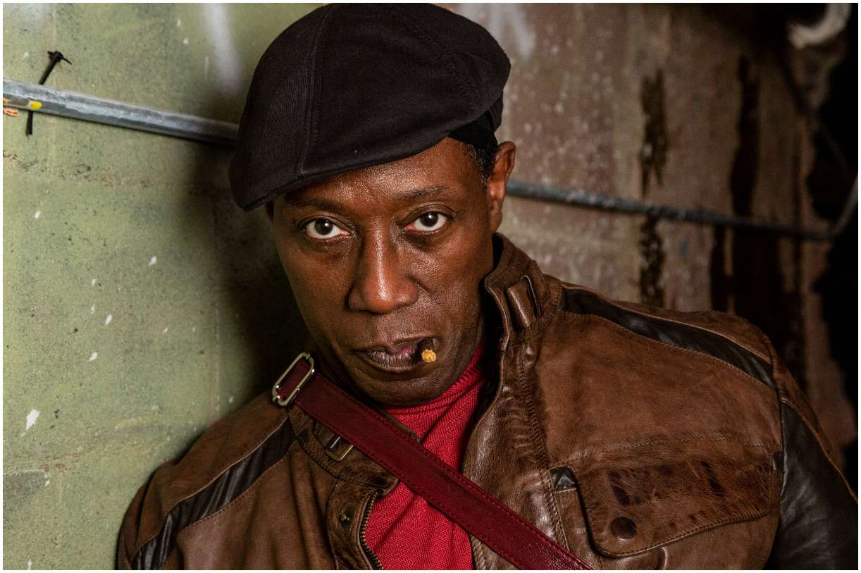 Wesley Snipes Net Worth 2020 Wife, Bio, Blade, Prison, Quotes