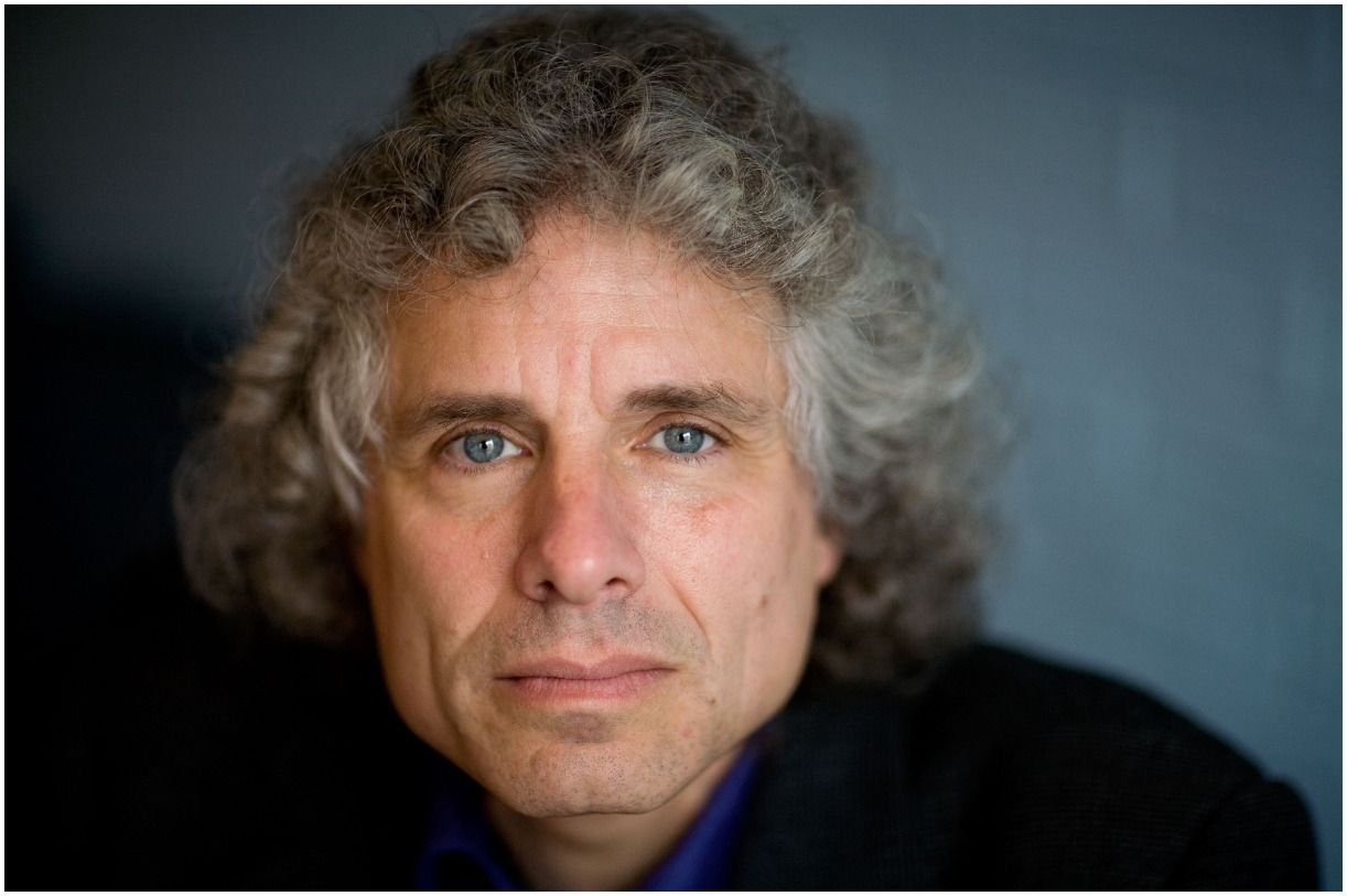 Steven Pinker - Net Worth, Wife, Books, Hair, Quotes