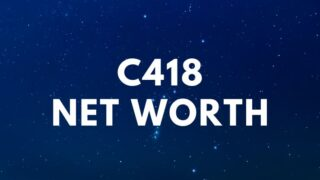 C418 – Net Worth, Minecraft, Stranger Things, Biography
