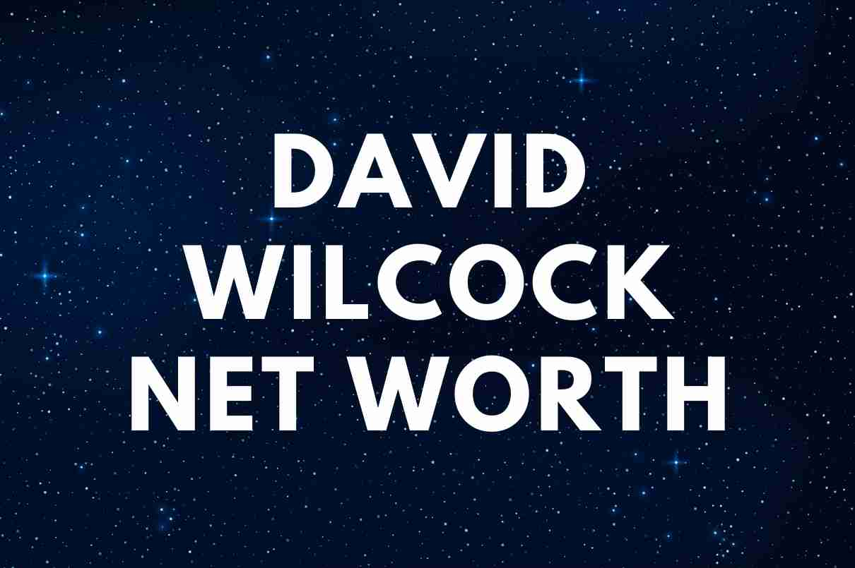 what is the net worth of David Wilcock
