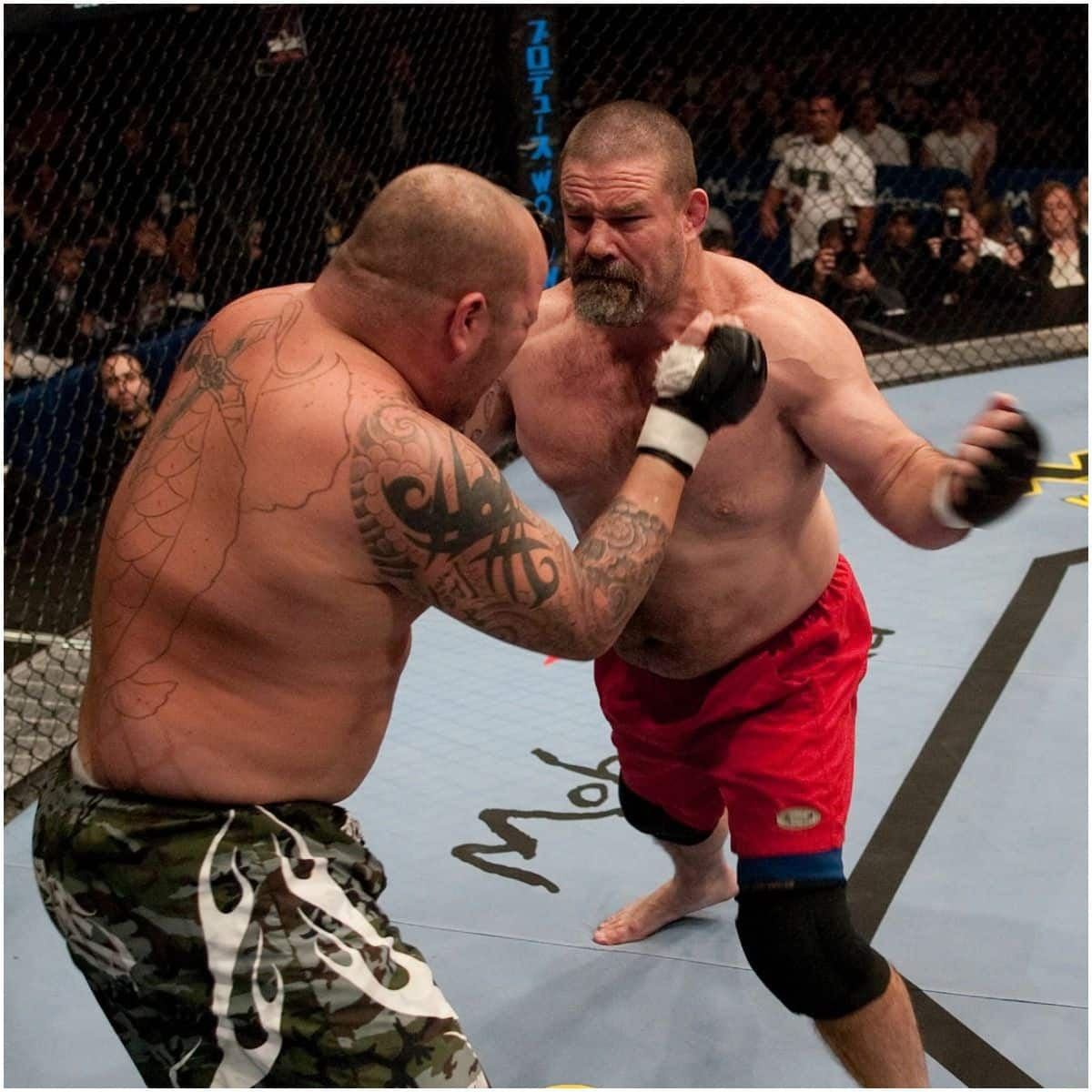 what is the net worth of Tank Abbott
